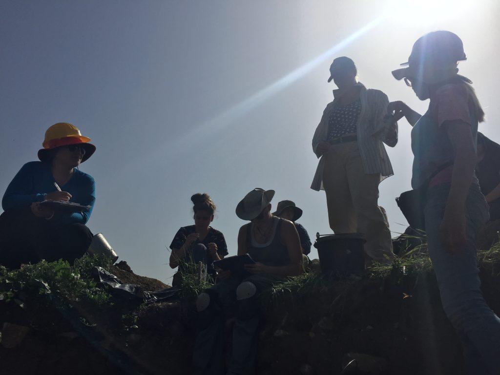 Excavators Clustered Around the Dig