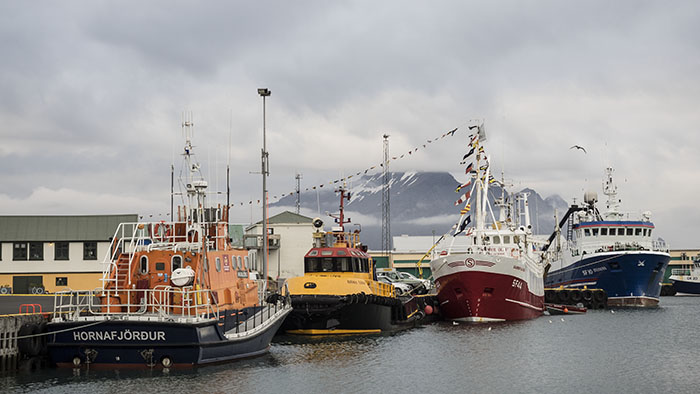 Not much change in the harbor of Höfn.