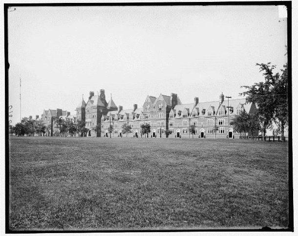 The History of Elm Trees at Trinity | History @ Trinity