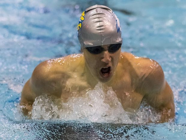 Men's Swimming and Diving Finishes Regular Season