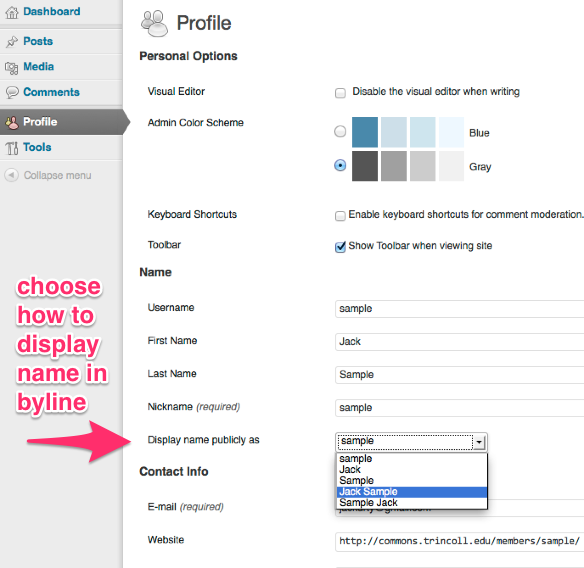 Options to display your name in your byline on WordPress.